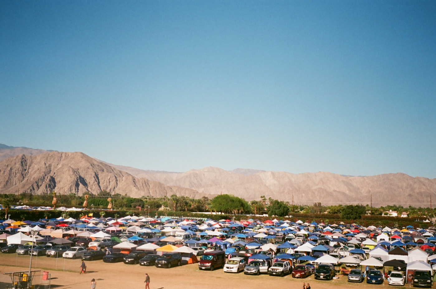 The Magic of Coachella Weekend 2 on 35mm Film – FEMME RIOT