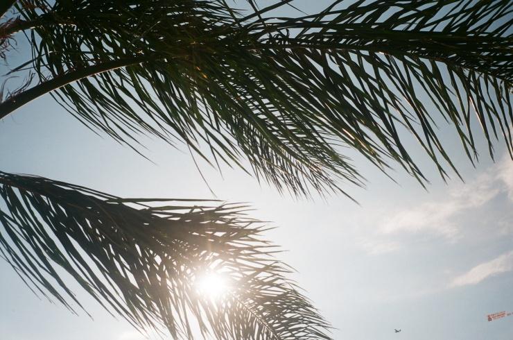 Beach_3.jpeg